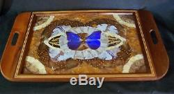 Antique Vintage Wood Marquetry Inlaid BUTTERFLY WING Large Serving Tray 1930
