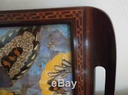 Inlaid Wooden Serving Tray with Butterflies Under Glass Brazil 18 1/2 x 11 1/4