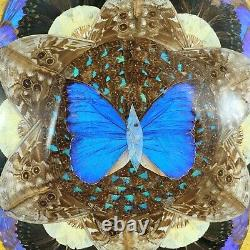 MCM Butterfly Wing Art Tray or Wall Decor Wood Inlay 20 x 13