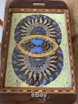 VTG deco Iridescent Butterfly Wing Serving Tray Wall Hanging Inlaid Wood Frame