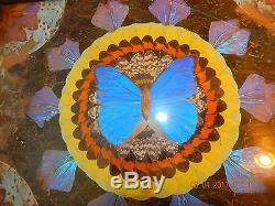 Vintage Butterfly Wing Art Inlaid Wood Serving Tray Glass Cover Mid Century