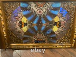 Vintage Butterfly Wing Art Wood Inlay Serving Tray Rio de Janeiro Brazil 14 x 8