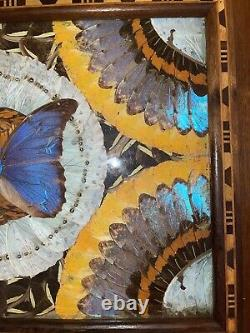 Vintage Handmade Butterfly Wing & Inlaid Wood Tray