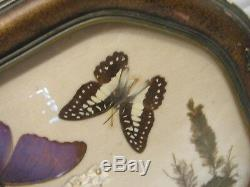 Vintage Iridescent Butterfly Wing Weed n Seed Folk Art Serving Wood Tray