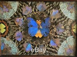 Vintage Ornate Real Butterfly Serving Tray- Brazilian Mahogany Wood Inlay