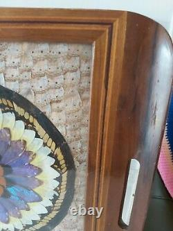 Vintage Wooden Serving Tray Butterfly Wings Under Glass Inlaid Hanging Picture