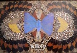 Vtg Brazilian Iridescent Butterfly Wing Art Serving Wood Tray Inlay Border 14x7
